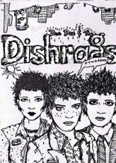 Dishrags 5