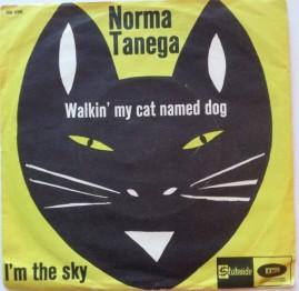 Cat named